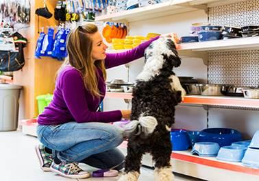 7 erros no atendimento ao cliente no Pet Shop