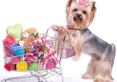 Como precificar produtos corretamente em seu pet shop?