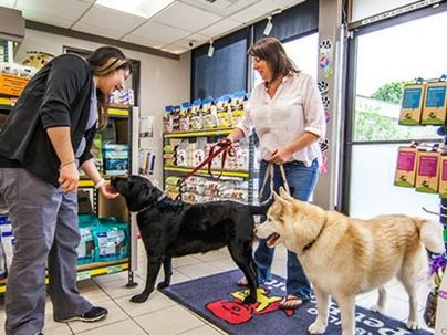 Proximidade é diferencial para o pequeno varejo nas vendas de pet shop