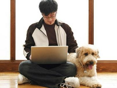 Software de Gestão: 10 vantagens para seu negócio pet